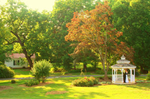 the gazebo is a perfect spot for your Northern Virginia intimate wedding