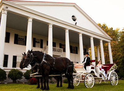 Imagine a horse and carriage wedding